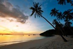 Bella alba alla spiaggia Fotografia Stock