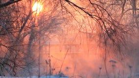 Bella alba di inverno sopra il fiume con una nebbia video d archivio