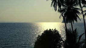 Bella alba di vista di oceano ad estate video d archivio
