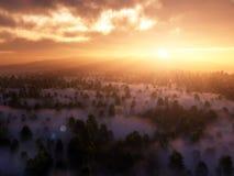 Bella alba dorata sopra Forest Landscape nebbioso Immagine Stock Libera da Diritti