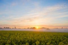 Bella, alba nebbiosa su un campo vicino al villaggio Immagini Stock Libere da Diritti