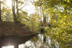Bella alba nella foresta con un lago e un ponte calmi fotografia stock