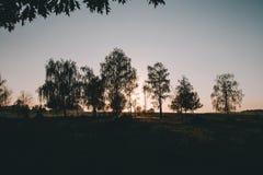 Bella alba nella valle del fiume immagine stock