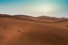 Bella alba in Sahara Desert marocchina, Nord Africa Fotografia Stock