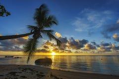Bella alba sulla spiaggia di paradiso, Seychelles 6 Fotografia Stock Libera da Diritti