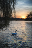 Bella alba vibrante della primavera sopra il lago calmo nel titolo inglese Fotografie Stock Libere da Diritti