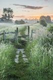Bella alba vibrante di estate sopra il landsc inglese della campagna Fotografia Stock