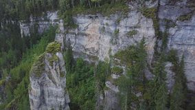 Bella allerta della montagna alta sulle montagne clip Valle enorme con la vista superiore della foresta spessa dell'eucalyptus di Immagini Stock