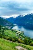 Bella allerta della Norvegia Stegastein della natura Immagini Stock Libere da Diritti