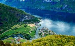 Bella allerta della Norvegia Stegastein della natura Immagine Stock Libera da Diritti