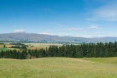 Bella alta montagna della collina della Nuova Zelanda Fotografia Stock