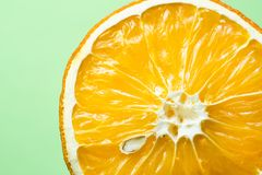 Bella arancia secca con il primo piano su un fondo verde chiaro, concetto sano dell'osso dell'alimento immagine stock libera da diritti