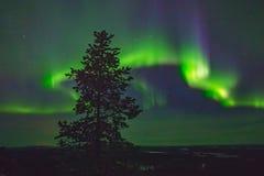 Bella aurora boreale sopraelevata Fotografie Stock Libere da Diritti