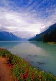 Bella baia d'Alasca immagini stock
