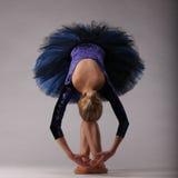 Bella ballerina in blu che posa e che balla nello studio Arte di balletto classico Immagini Stock Libere da Diritti