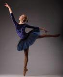 Bella ballerina con l'ente perfetto nel dancing blu dell'attrezzatura del tutu nello studio Arte di balletto Fotografia Stock
