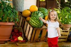Bella bambina al mercato degli agricoltori Immagini Stock Libere da Diritti