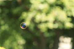 Bella bolla di sapone traslucida all'aperto il giorno soleggiato immagine stock