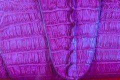 Bella borsa porpora della pelle di coccodrillo da vendere nel luxur Fotografia Stock
