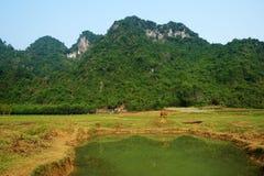 Bella campagna di Quang Binh, Vietnam Fotografie Stock