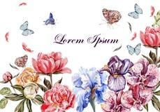 Bella carta dell'acquerello con i fiori della peonia illustrazione vettoriale