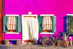 Bella casa porpora con una bicicletta, le piante ed il banco Case variopinte nell'isola di Burano vicino a Venezia, Italia Immagini Stock Libere da Diritti