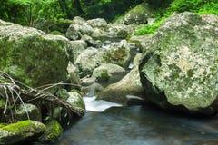 Bella cascata Fotografie Stock