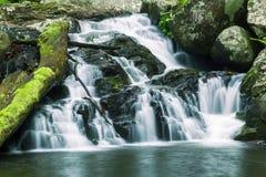 Bella cascata Immagini Stock Libere da Diritti