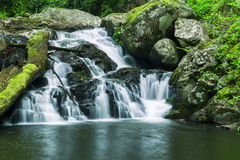 Bella cascata Immagine Stock