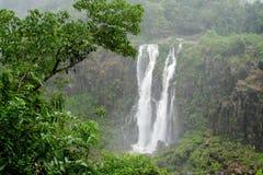 Bella cascata alta in foresta Fotografia Stock Libera da Diritti