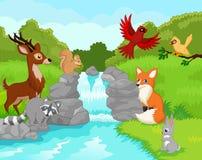 Bella cascata con gli animali selvatici Immagini Stock Libere da Diritti