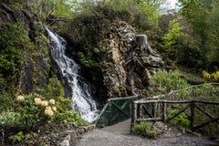 Bella cascata e giardino inglese Scozia dei fiori delle piante Immagini Stock