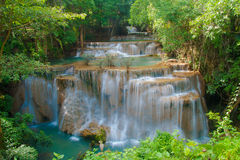 Bella cascata in foresta immagini stock
