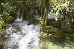 Bella cascata in montagna Immagine Stock