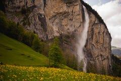 Bella cascata nel villaggio dello svizzero di Lauterbrunnen Fotografie Stock