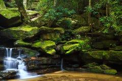 Bella cascata in Nuovo Galles del Sud, Australia Fotografie Stock Libere da Diritti