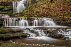 Bella cascata precipitante a cascata nella regolazione pacifica del terreno boscoso Fotografia Stock