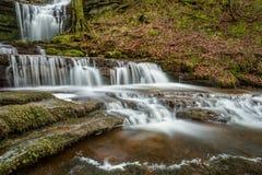 Bella cascata scorrente con le cascate nell'ambiente del terreno boscoso Fotografia Stock