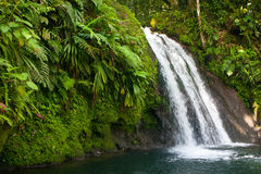 Bella cascata sull'isola della Guadalupa Immagine Stock Libera da Diritti