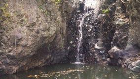 Bella cascata tropicale Bali, Indonesia Immagine Stock