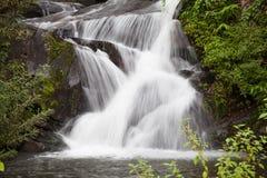 Bella cascata tropicale da Phu Soi Dao National Park Fotografia Stock Libera da Diritti