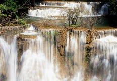 Bella cascata in una foresta Immagini Stock Libere da Diritti