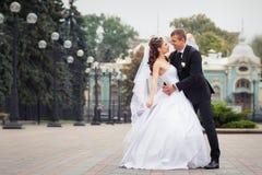 bella cerimonia nuziale delle coppie Immagine Stock