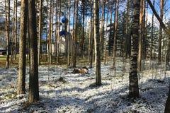 Bella chiesa russa in un boschetto del pino I raggi del sole su un gelido fotografia stock