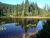 Bella Columbia Britannica Fotografia Stock Libera da Diritti
