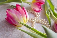 Bella composizione con tre tulipani e collane rossi della perla, composte sotto forma di otto sul fondo di lerciume Immagini Stock