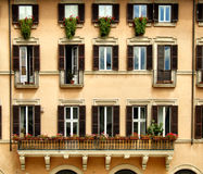 Bella composizione nelle finestre Immagini Stock
