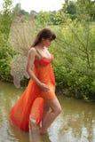 Bella crisalide di acqua Fotografia Stock