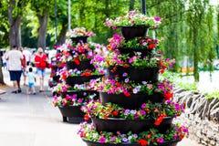 Bella decorazione dei fiori sulla via Disposizioni dei fiori variopinte sul marciapiede fotografia stock libera da diritti