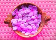 Bella decorazione del fiore sul vaso di argilla immagini stock